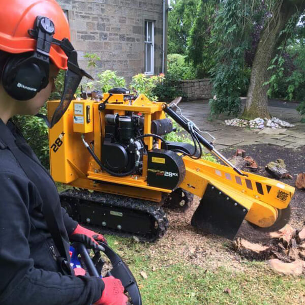 image of tree stump being removed with equipment